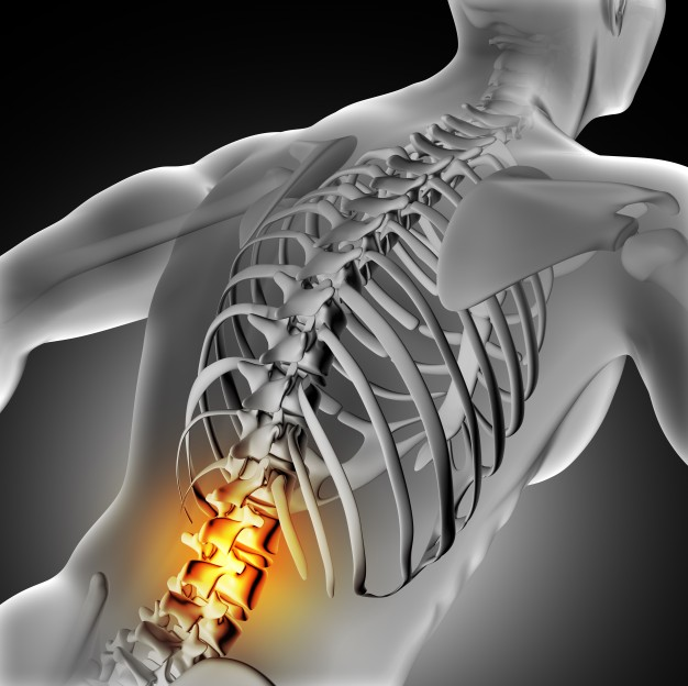 Back and Spine Pain NJ